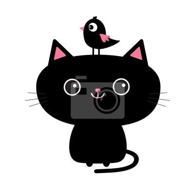 Velké černé kočičky com