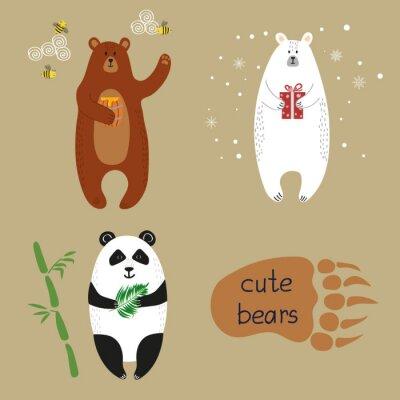 Fototapeta Roztomilé medvědi set. Kolekce kreslený vektorové ilustrace medvěda hnědého, ledního medvěda a Panda.