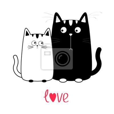 Pěkná černá dívka kočička