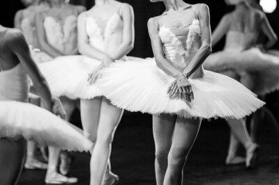 Fototapeta Ruce baletky. Ruce baletky. Balet prohlášení. Velké baletky. Baleríny v pohybu.
