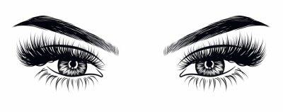 Fototapeta Ručně kreslená ženská sexy make-up vypadá s perfektně tvarovaným obočím a extra plnými řasami. Idea pro obchodní vizitku, typografický vektor. Dokonalý vzhled salonu