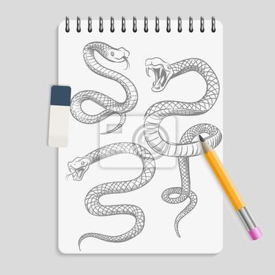Rucne Kreslene Hady Na Realisticke Strance Notebooku S Tuzkou