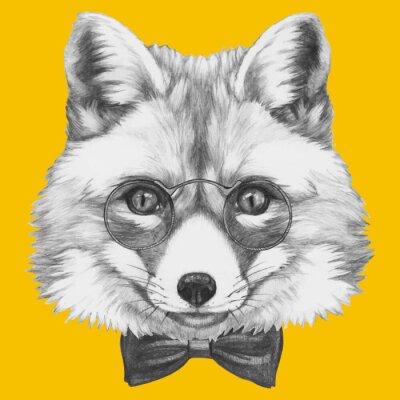 Fototapeta Ručně malovaná portrét Fox s brýlemi. Vektorové samostatný prvky.