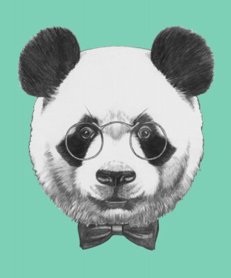 Fototapeta Ručně malovaná portrét Panda s brýlemi a motýlka. Vektorové samostatný prvky.