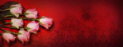 Fototapeta Růže, červená bokeh