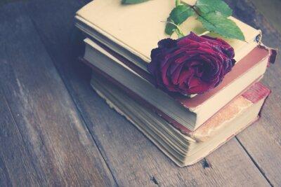 Fototapeta růže na knihy