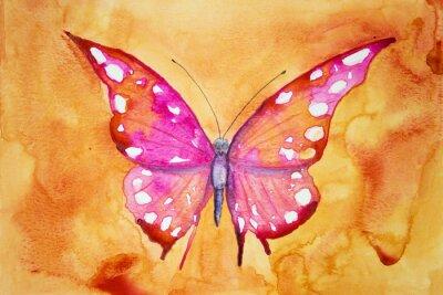 Fototapeta Růžová motýl s oranžovým pozadím. Poklepáváním technika poskytuje změkčující účinek v důsledku drsnosti změněné povrchu papíru.