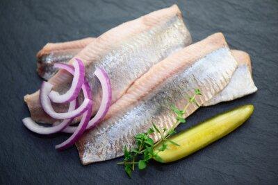 Fototapeta ryby