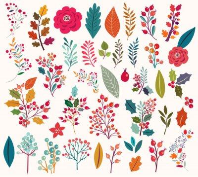 Fototapeta Sbírka květy a listy