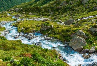 Fototapeta Scenic Alpine River