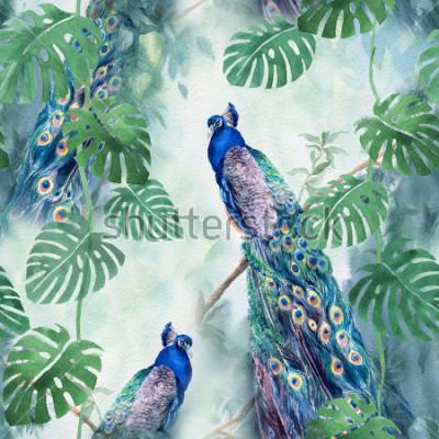 Fototapeta Seamless watercolor pattern with peacock