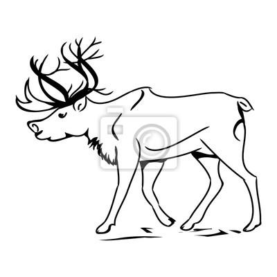 Šedá jelen (obrys) 0 fototapeta • fototapety krásná 450741eb4c