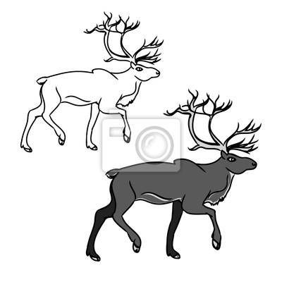 Šedá jelen (obrys) 1 fototapeta • fototapety krásná f39b376360