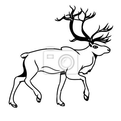 Šedá jelen (obrys) 2 fototapeta • fototapety krásná 9ba035f614