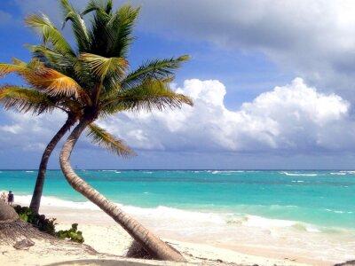 Fototapeta Sen pláž