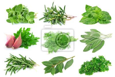 Fototapeta Set ze zeleného koření