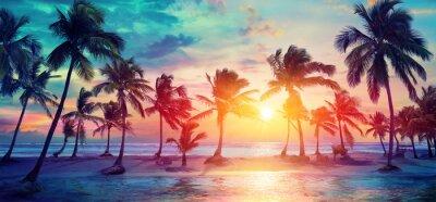 Fototapeta Siluety palem na tropické pláži při západu slunce - moderní vintage barvy