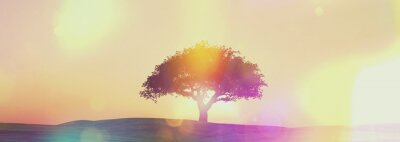 Fototapeta Širokoúhlý západ slunce strom krajina s retro efekt