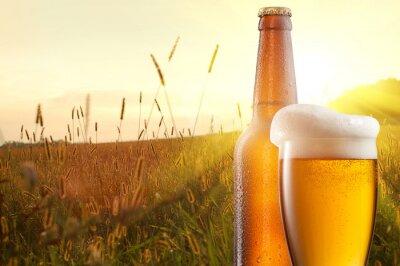 Fototapeta Sklenici piva a láhev proti pšeničné pole a slunce
