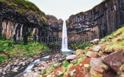 Fototapeta Skvělý výhled na vodopád Svartifoss. Dramatická a malebná scéna. Oblíbená turistická atrakce. Ostrov, Evropa