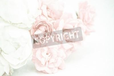 Fototapeta Sladké barvy růží v měkkém a rozmazaném stylu na moruše papíru textura