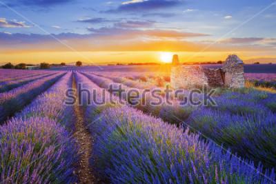 Fototapeta Slunce zapadá nad krásnou fialovou levandulí podanou ve Valensole. Provence, Francie