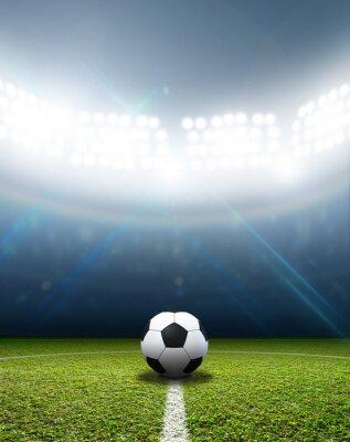 Fototapeta Stadion a fotbalový míč
