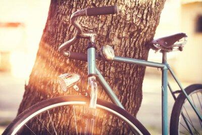Fototapeta Staré kolo opřený o strom