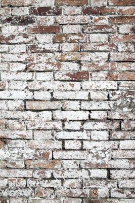 Fototapeta Staré velké červené cihlové zdi pozadí zoufalý bílou barvou