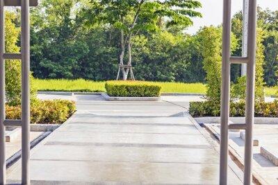 Fototapeta Stepping konkrétní cesta v klidné zelené zahradě
