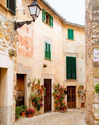 Fototapeta Středověká tradiční vesnice Valldemosa Mallorca