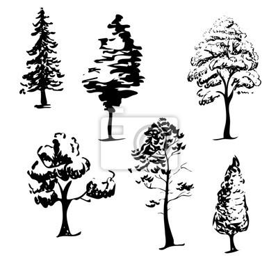 Stromy Skica Rychla Kresba Stromu V Cerne Na Bilem Pozadi