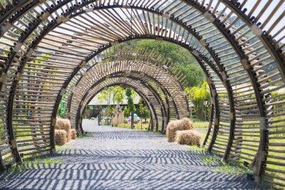 Fototapeta Struktura tunel bambus v zahradě