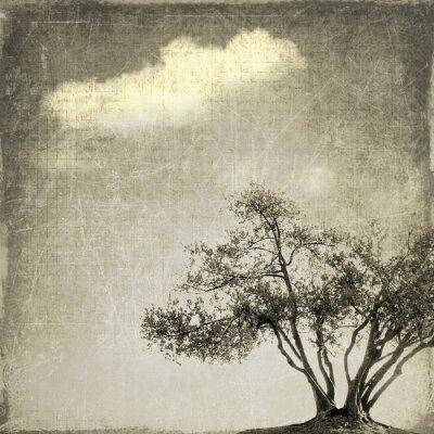 Fototapeta Surrealistické krajina s jediný strom v sépie