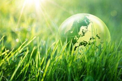 Fototapeta svět koncepce ochrany životního prostředí - Evropa