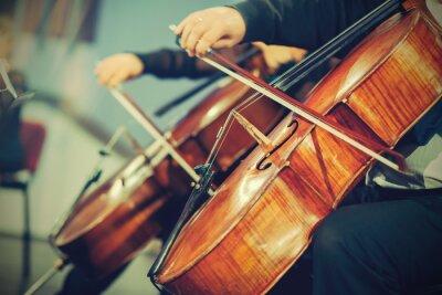 Fototapeta Symfonický orchestr na jevišti, ruce hraje na violoncello