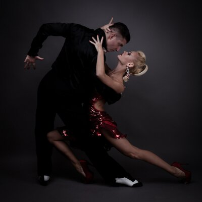 Fototapeta taneční partneři