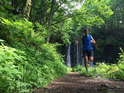 Fototapeta Trail běžec na lesní cestě