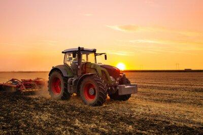 Fototapeta Traktor na poli ječmene od západu slunce.