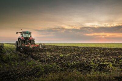 Fototapeta Traktor orat pole