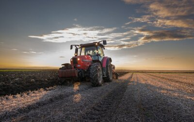 Fototapeta Traktor orba