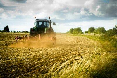 Fototapeta Traktor pluhy pole