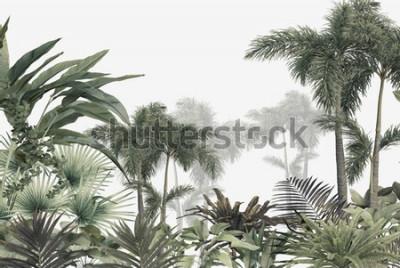 Fototapeta tropical trees and leaves wallpaper design in foggy forest - 3D illustration