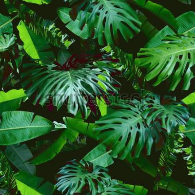 Fototapeta Tropické květinové listy bezešvé vzor zelené barvy na pozadí černé džungle. Přírodní foto koláž zelená barva. Umělecký design pro květinový tisk a moderní tapety.