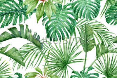 Fototapeta Tropické listy. Monstera, strelitzia, dlaně. Akvarel bezešvé vzor.