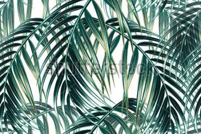 Fototapeta Tropické palmové listy bezešvá vektorová květinový vzor pozadí