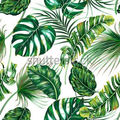 Fototapeta Tropické palmové listy, monstera, džungle list vektorové bezešvé květinové letní vzorek pozadí
