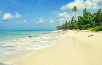 Fototapeta Tropické písečná pláž v karibském moři, Dominikánská republika. Letní pláž ráj. Island pláž s modrou mořskou vodou. Mořské pěny na pláži. Ráj mořském pobřeží. Prázdné mořské pláži.