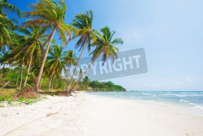 Fototapeta tropické pláže s kokosové palmy a moře