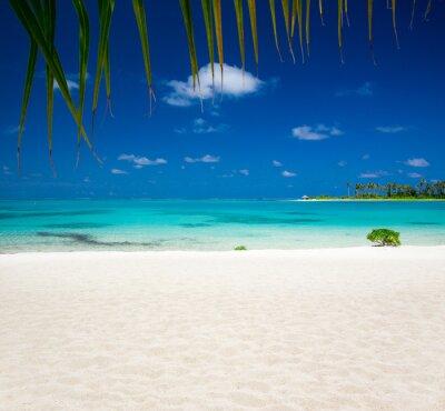Fototapeta tropické pláže v Maledivy